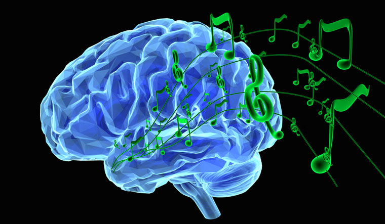 Researchers unriddle the puzzle of musical synchronisation in human brain